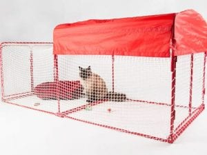Kritter Kondo Deluxe Catio - Red/White