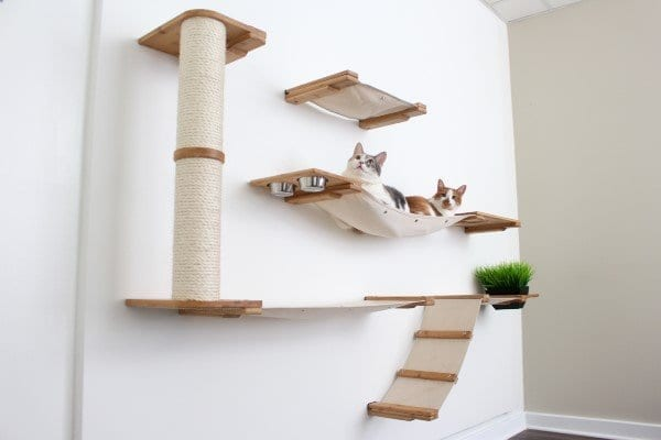 Bunker Cat Shelf with Hammock and Scratching Post