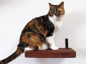 "Legacy Solid Pine 12"" Cat Shelf"
