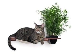 Planter Lounge Cat Shelf