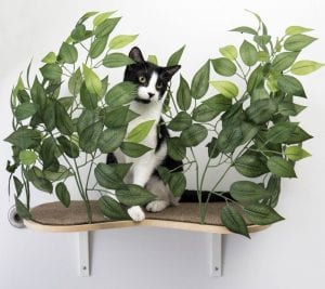 Cat Furniture Your Feline Friendly Home Can't Do Without