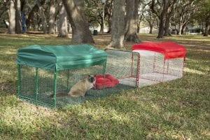 kritter kondo cat enclosure