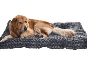 AmazonBasics Plush Dog Bed