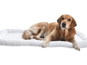 AmazonBasics Faux-Sherpa Padded Bolster Dog Bed