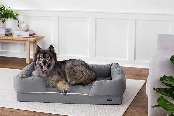 AmazonBasics Pet Sofa Lounger Bed