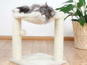 Bizzy Scratching Post Cat Hammock Tree