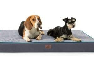 Bedsure Orthopedic Memory Foam Dog Bed