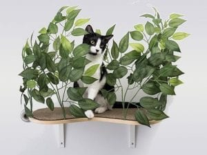 Canopy Curved Cat Wall Shelves with Leaves - Set of (2)