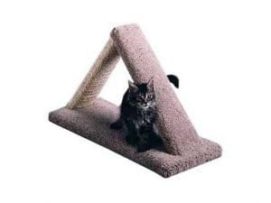 Cat Scratch Triangle