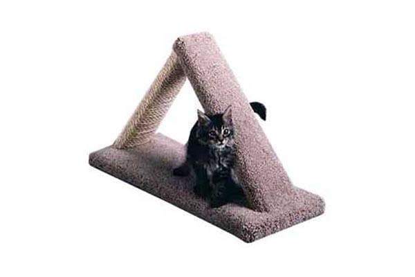 Cat Scratch Triangle