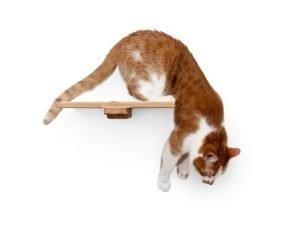 """12"""" Wooden Cat Shelf"""