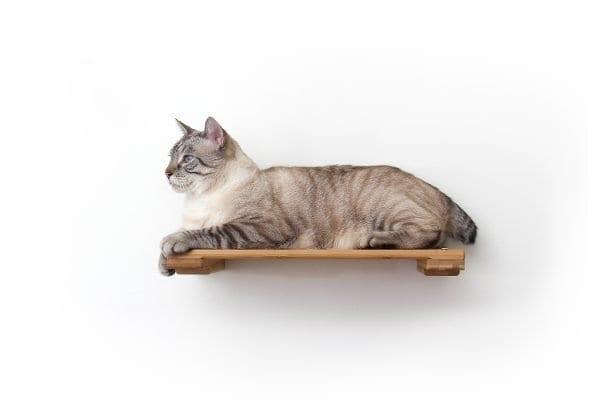 """18"""" Wooden Cat Shelf"""
