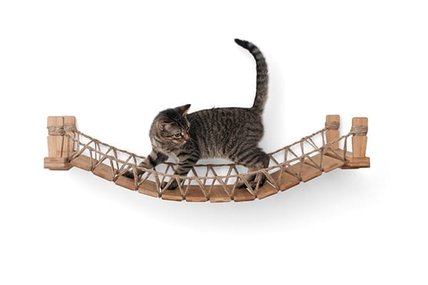 Bamboo Cat Bridge by Catastrophic Creations