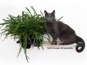 Cat Shelf Planter