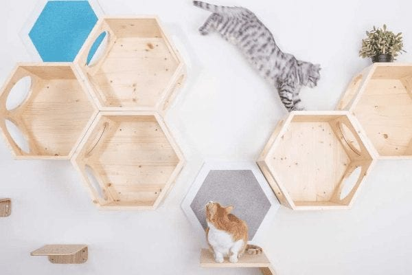 Busy Cat Wall Mounted Cat Perch and Shelf System
