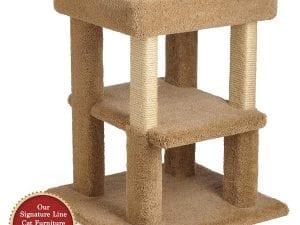 Cat Coliseum with Shelf
