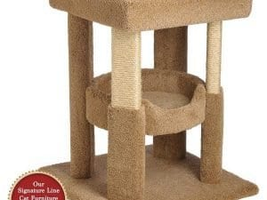 Cat Coliseum with Tub