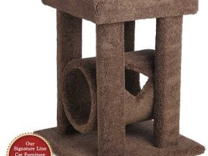 Cat Coliseum with Tube