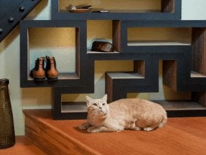 Modular Cat Tree Shelving System