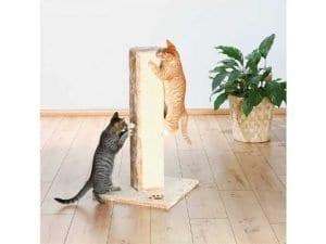 Sassafrass Cat Scratching Column