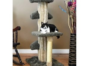 Unique Cat Play Tree