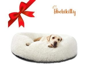 HACHIKITTY Donut Dog Beds