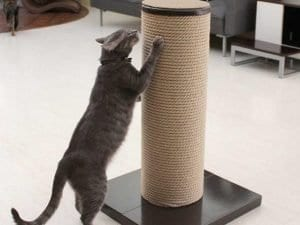 MaxScratch Oversized Cat Scratching Post and Perch