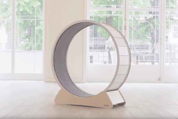 Hoiru Cat Wheel