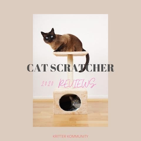 cat scratchers and reviews