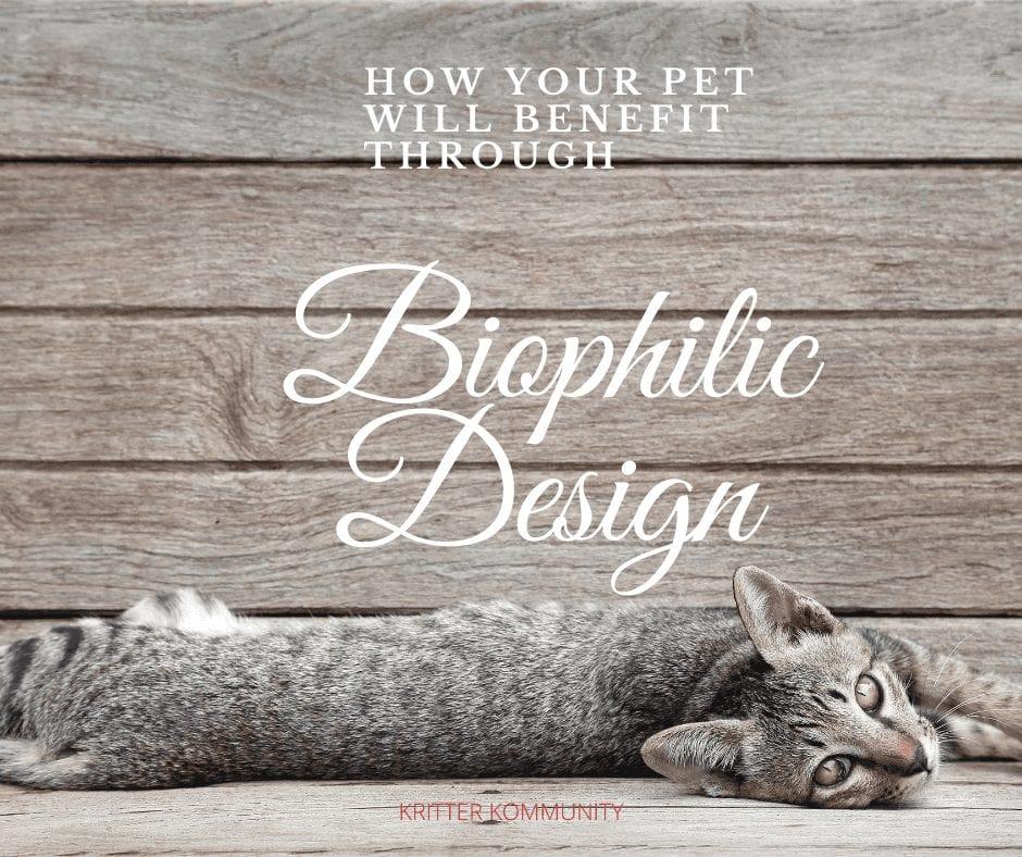 Biophilic Design for Pets