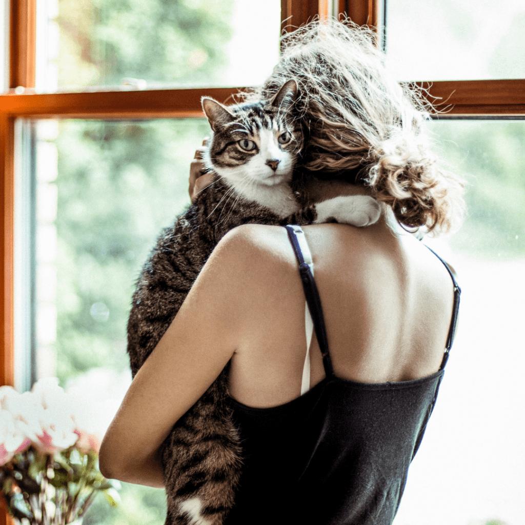 cats show affection