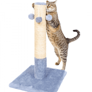 what type of scratching posts do cats prefer?