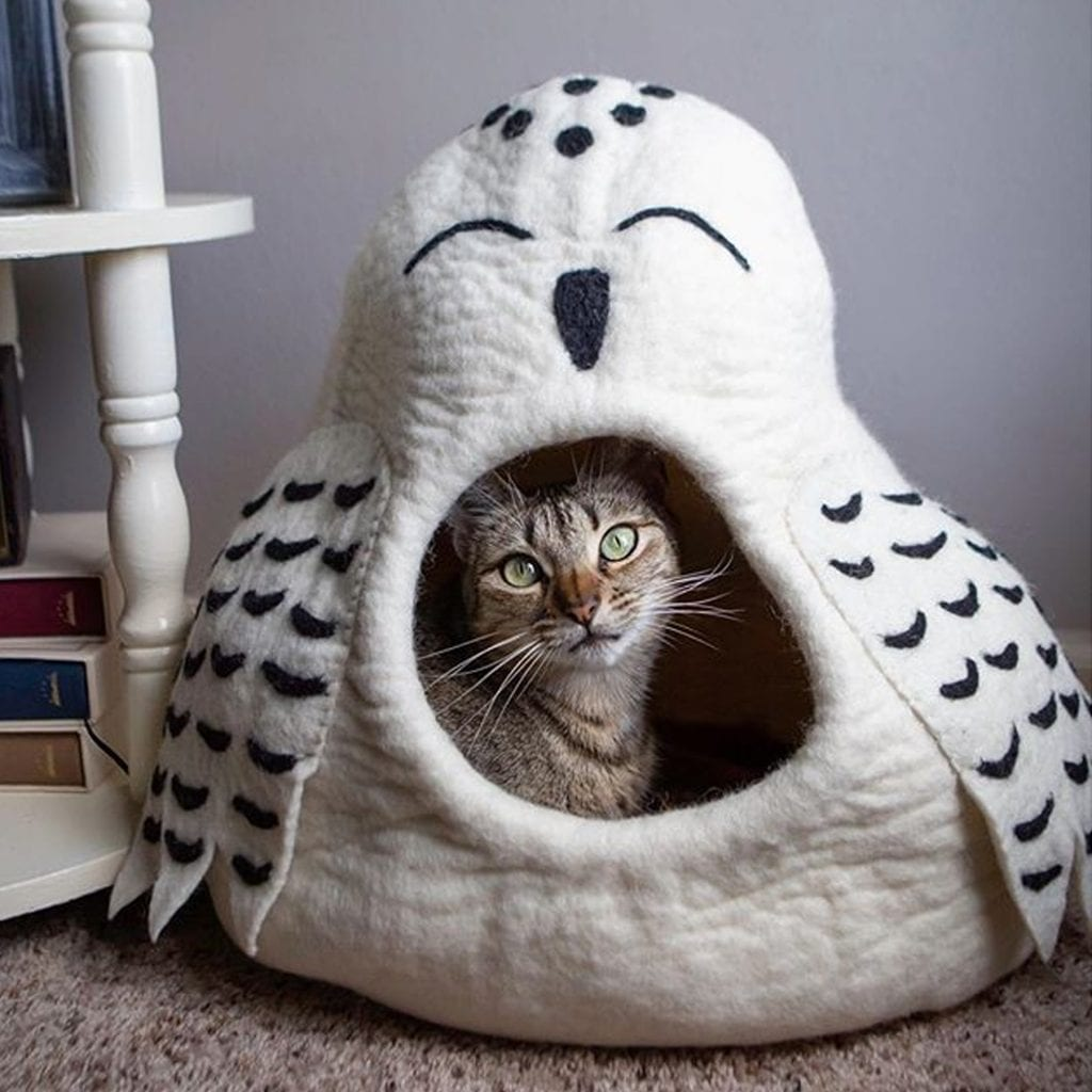 Cat Cave Giveaway: Snow Owl